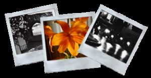 galleria-foto-artistiche-alberto-fratoni