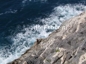 linda-fratoni-cinque-terre-liguria-italia-pescatore-fotoartistiche-foto-artistiche