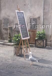 linda-fratoni-roma-lazio-italia-gabbiano-a-pranzo-fotoartistiche-foto-artistiche